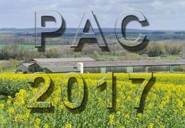 PAC 2017