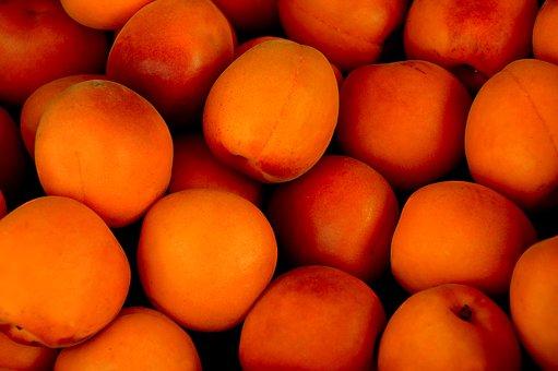apricot-1556851__340