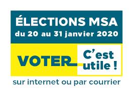 bandeau 2 elections mSA