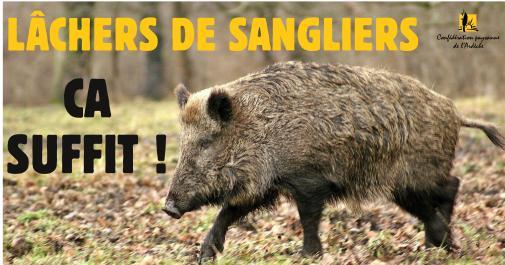 RS - lacher sanglier-page001